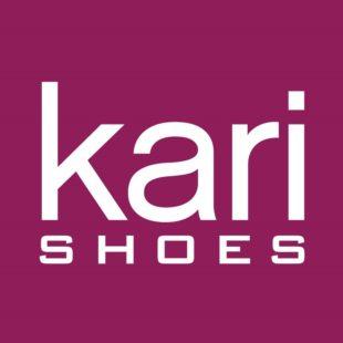 Знакомство с компанией kari